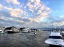 Bridge Tender Marina
