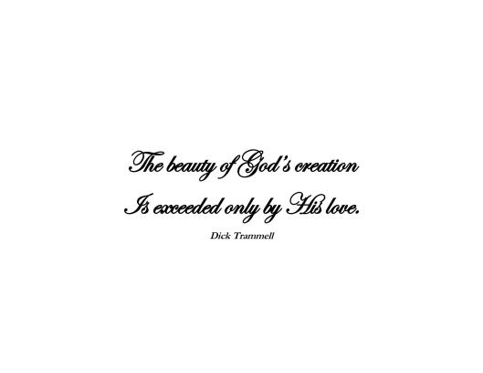 The beauty of Gods creation_Page_1