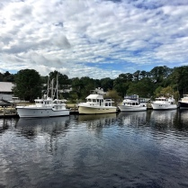 """""""Pretty maids all in a row"""" as we idle past the face dock and head to Hampton."""